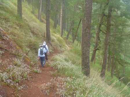 bacuyan trail